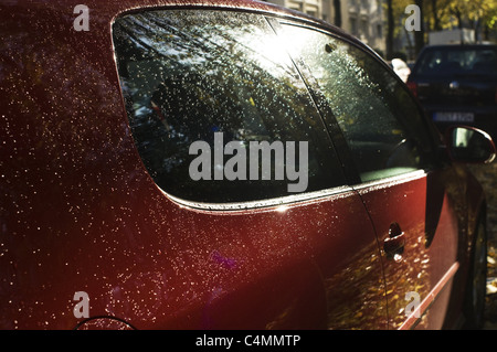 waterdrops on a car - Stock Photo