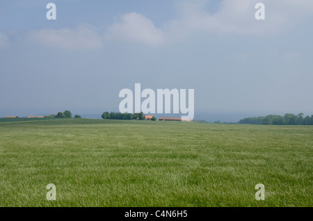 Denmark, Island of Bornholm. Countryside near Gudhjem along the Baltic Sea coastline. - Stock Photo