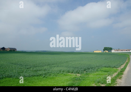 Denmark, Island of Bornholm. Countryside farm near Gudhjem. - Stock Photo