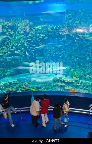 Beijing, China, People Visiting Aquarium, 'Beijing Zoo' - Stock Photo