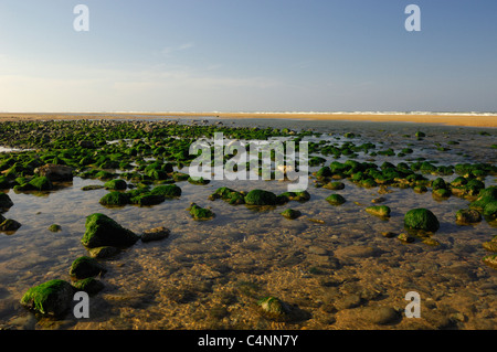 Omaha beach, site of D-Day landings, Normandy, France - Stock Photo