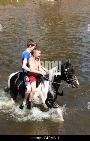 Gypsy boys swimming a horse at the Appleby Horse Fair, Appleby-In-Westmorland, Cumbria, England, U.K. - Stock Photo