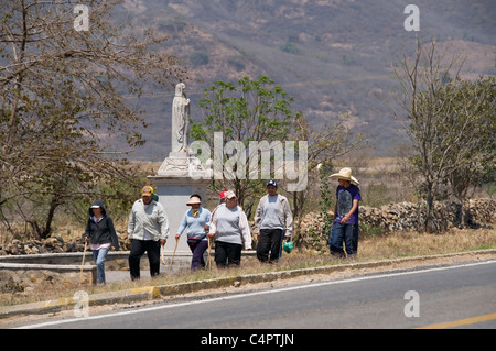 A group of devoted walkers make their way to Talpa de Allende during the annual pilgrimage to visit the Virgin of - Stock Photo
