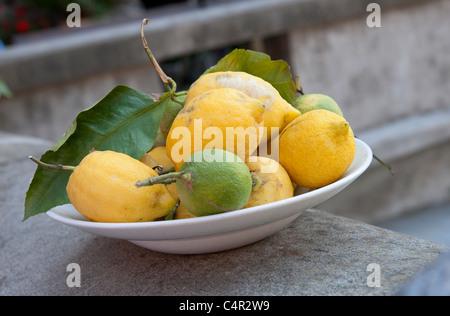 bowl of freshly picked lemons, tuscany, italy - Stock Photo