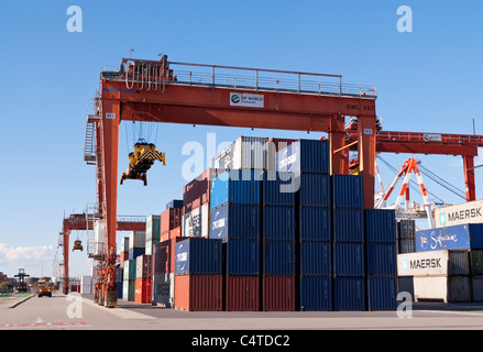 Shipping Container Crane   Fremantle   Australia; Kalmar Container Stacking  Mobile Crane At DP World Container Storage Yard, North Fremantle Port,
