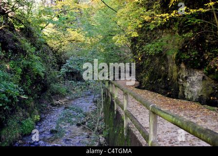 beautiful path in Italian Alps - Stock Photo