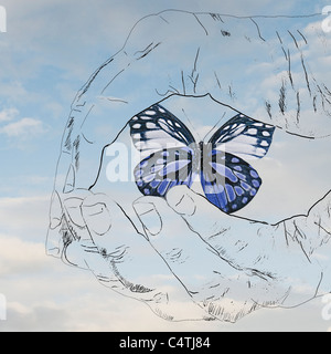 Cupped hands holding butterfly - Stock Photo