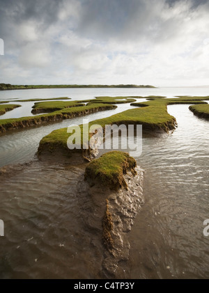Tidal Marsh at the Skern at High Tide. Northam Burrows Country Park. Devon. England. UK. - Stock Photo