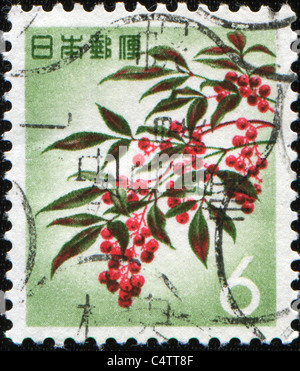 JAPAN - CIRCA 1960s: A stamp printed in Japan shows Japanese rowans or mountain-ashes - Sorbus commixta, circa 1960s - Stock Photo
