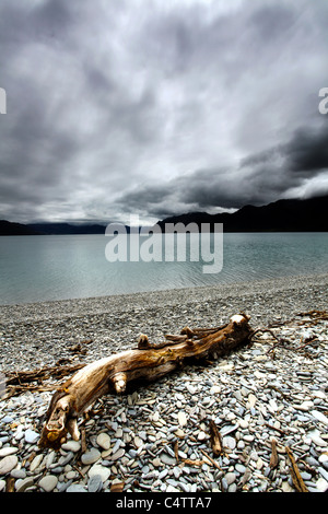 A large piece of driftwood on a pebble beach at Lake Hawea, Otago, New Zealand. An ominous sky with flat calm water. - Stock Photo