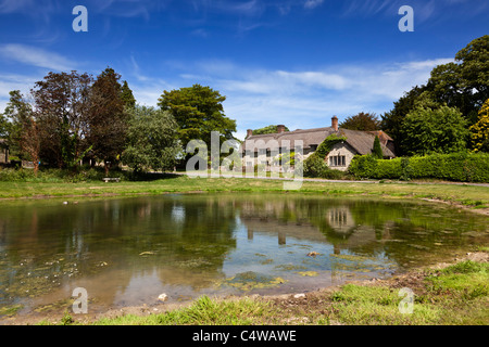 Ashmore duck pond and Thatched Cottage, Ashmore, Dorset, England, UK