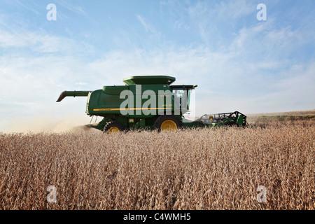 John Deere combine harvesting soybeans in a field in Iowa. - Stock Photo