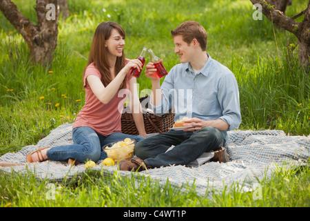 USA,Utah,Provo,Young couple toasting drinks during picnic - Stock Photo