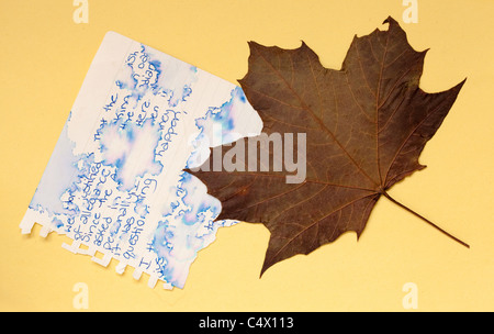 unreadable note and dry maple leaf on yellow background - Stock Photo