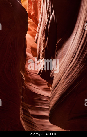 Sunlight illuminating eagle head shape sculpted by flooding in red sandstone walls of Antelope Canyon Navajo Lands - Stock Photo
