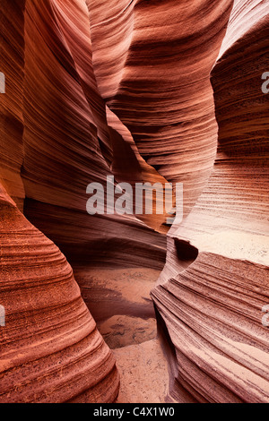 Sunlight illuminating sculpted curves and lines carved in red sandstone walls of Antelope Canyon by water erosion - Stock Photo