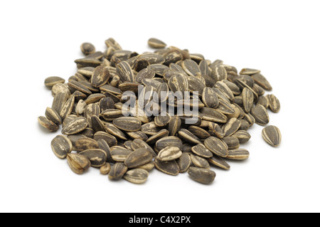 Sunflower Seeds, Roasted - Stock Photo