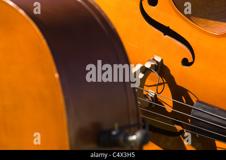 At the Fullerton graduation ceremony a close up picture of a stand up bass. - Stock Photo