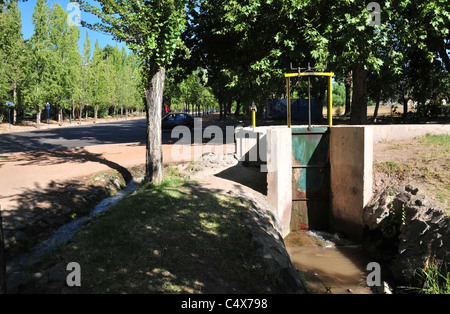 Green sluice gate controlling irrigation ditch water in trees, Avenida Libertador, Parque General San Martin, Mendoza, - Stock Photo