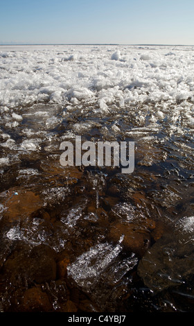 Blocks of melting sea ice float to the shore , Gulf of Bothnia , Finland - Stock Photo