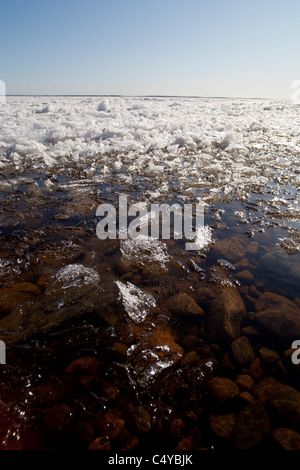 Blocks of melting sea ice float to the shore at Spring thaw Oulu , Gulf of Bothnia , Finland - Stock Photo