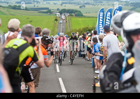 © Reuben Tabner.  Stamfordham, Northumberland, UK  26/06/11. Thousands of cycling fans lined the roads in Northumberland - Stock Photo