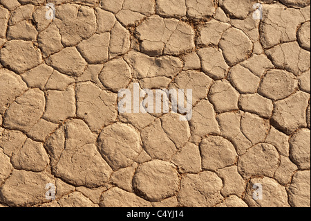 Dry mud texture of clay exposed to air at Dead Vlei, Namib-Naukluft Park in central Namibia. - Stock Photo