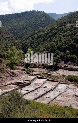 Traditional salt farming in the Ourika valley, Morocco. - Stock Photo