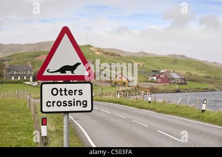 Road sign warning otters crossing near a sea loch on Scottish Shetland island coast. Whiteness, Shetland Isles, - Stock Photo