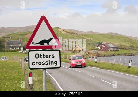 Road sign warning otters crossing on a Scottish main road near a sea loch on coast. Whiteness, Shetland Islands, - Stock Photo