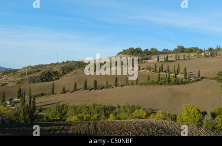 Famous curve in the road lined by cypresses near La Foce in the Val d'Orcia in Tuscany, Italy. - Stock Photo