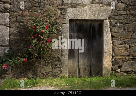 A stone house is decorated with red flowers in the French Way of St. James Way, Galicia - Stock Photo