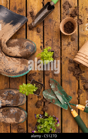 Muddy boots and garden tools with flowers on a back deck, calibrachoa, pansy, veralena, verbena, - Stock Photo