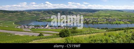 Panorama von Piesport an der Mosel Mittelmosel, Rheinland-Pfalz, Deutschland, Moselle Mosel river Rhineland-Palatinate - Stock Photo