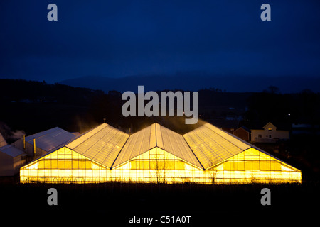 Bright lights glow out from greenhouse with hills in the distant fading away into the sky at nighttime - Stock Photo