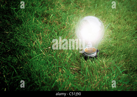 Alternative energy concept - Light bulb glowing in the grass at night - Stock Photo