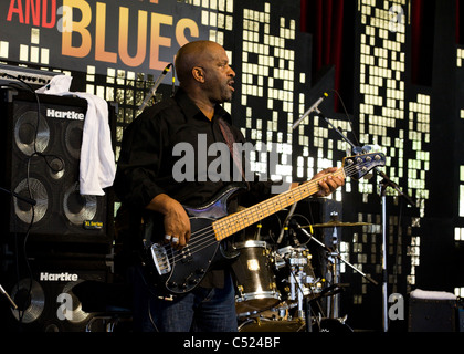 A bass player on stage - Stock Photo