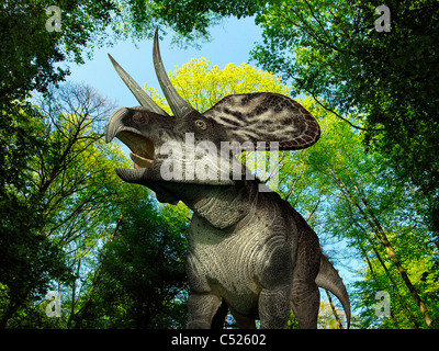 A Zuniceratops wanders a Cretaceous forest. - Stock Photo