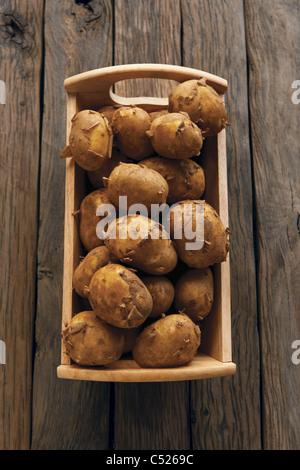 Jersey Royal Potatoes - Stock Photo