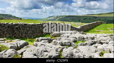 Limestone pavement at Chapel-le-Dale, Yorkshire Dales, UK. - Stock Photo