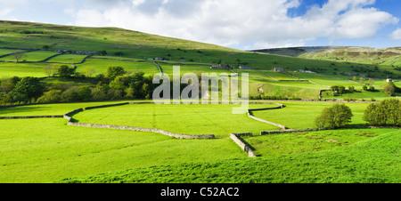 Farm fields, Swaledale, North Yorkshire, UK - Stock Photo