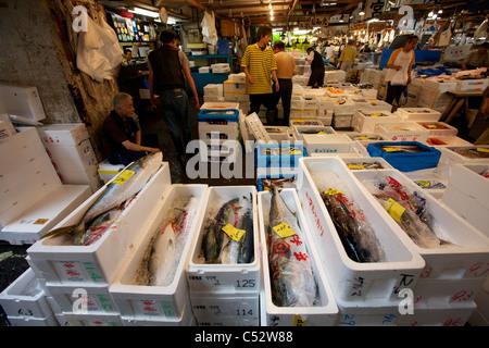 Fresh seafood for sale at the tsukiji wholesale seafood for Wholesale fish market