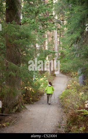 Woman hiking on Winner Creek Trail in Spruce and Hemlock boreal rain forest near Girdwood, Chugach National Forest, - Stock Photo