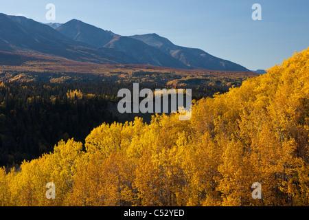 Scenic Autumn view of trees along the Alaska Highway in the Tatshenshini-Alsek Wilderness, Yukon Territory, Canada - Stock Photo