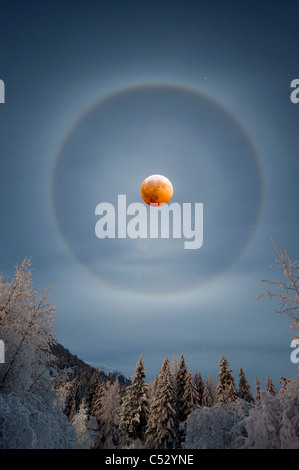 View of a perfect halo encompassing the moon during a rare winter lunar eclipse on December 20th, Girdwood, Alaska, - Stock Photo