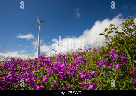 Wind Turbines on Pillar Mountain, Kodiak, Southwest Alaska, Summer - Stock Photo