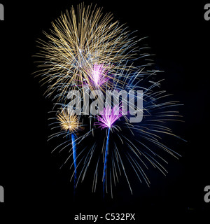 Fourth of July Fireworks, Orlando, Florida, Cranes Roost - Stock Photo