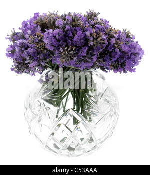 Fresh cut lavender flowers in a circular cut glass container - Stock Photo