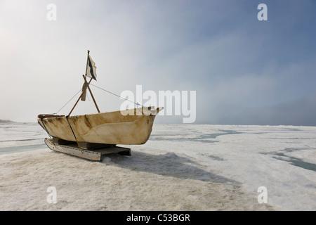 Inupiaq Eskimo Skin Boat  made from bearded seal skin resting on the shore ice of the Chukchi Sea off shore of Barrow, - Stock Photo