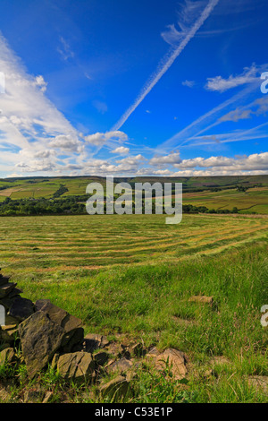 Mown silage field and view towards Ramsden Clough near Holmfirth, West Yorkshire, Peak District National Park,  - Stock Photo